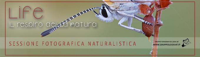 ArticoloSito_Uscita Naturalistica